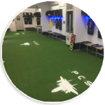 synthetic grass for inside